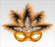 Elegant carnival mask with beautiful feathers. Vector illustration Royalty Free Stock Images