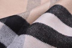 Elegant cashmere scarf Royalty Free Stock Photo