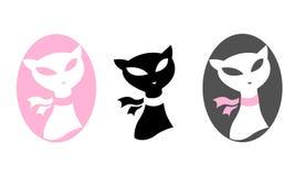 Elegant cat. Three elegant fashion colourful cats Stock Photography