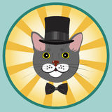 Elegant cat in top hat and bow tie Stock Photos