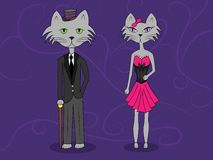 Elegant cats. An elegant cat couple with a purple background Stock Photos
