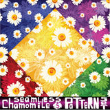 Elegant chamomile pattern set with six seamless patterns Royalty Free Stock Photo