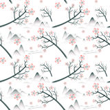 Elegant cherry blossom seamless pattern background Stock Image