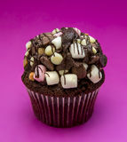 Elegant Chocolate Marshmallow Cupcake Stock Image