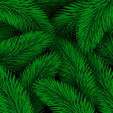 Elegant Christmas background seamless from green fir tree branch Stock Photos
