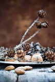Elegant Christmas Decor on Silver Tray with Pine cones and Nuts Stock Images