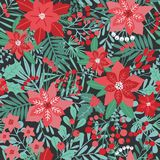 Elegant Christmas festive seamless pattern with green and red traditional holiday natural decorations on dark background. Flowers, berries, leaves, fir Royalty Free Stock Photos
