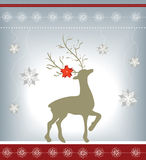 Elegant Christmas greeting card Stock Photography