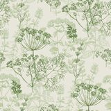 Elegant classic herbal seamless pattern. For background, wrapping paper, fabric, surface design. French grass for cooking in repeatable motif vector illustration