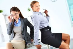 Elegant colleagues Stock Photography