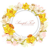 Elegant flower invitation postcard Stock Photos