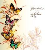 Elegant colorful vector background royalty free illustration