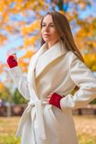 Elegant confident young woman Stock Image