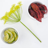 Elegant crayfish meal Royalty Free Stock Image