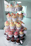 Elegant cupcakes exposed in a confectionery Stock Image