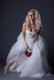 Elegant curly-haired bride posing in studio Stock Images