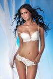 Elegant dam för sexig brunett i damunderkläder Royaltyfria Foton