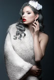 Elegant dam i ett pälslag med en skyla Vinterbild Härlig le flicka Arkivbild
