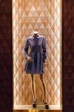 Elegant damtoalettklänning royaltyfri fotografi