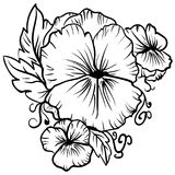 Elegant decorative pansy flowers sketch pansies Royalty Free Stock Photography