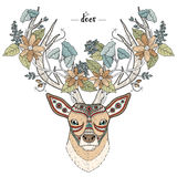 Elegant deer head Royalty Free Stock Photos