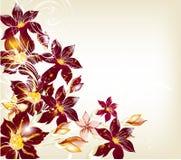 Elegant design with flowers Stock Image