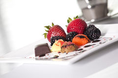 Elegant dessert. Plate with sorbet,fruit and chocolate Stock Image