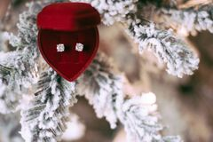 Oh Dear, It's Christmas - Holiday Gift For Her royalty free stock photos