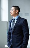 Elegant employer Royalty Free Stock Photos