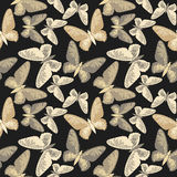 Elegant endless pattern with golden butterflies Royalty Free Stock Images