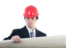 Elegant engineer looking at blueprints Stock Photo