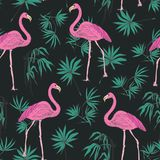 Elegant exotic seamless pattern with gorgeous pink flamingo birds and green tropical palm leaves hand drawn on dark Stock Images
