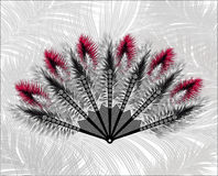Elegant fan made of beautiful feathers. Royalty Free Stock Photography