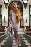 Elegant fashion woman with shopping bag Stock Image