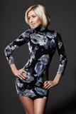Elegant fashionable woman Royalty Free Stock Images