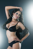 Elegant fashionable woman in black lingerie Royalty Free Stock Images