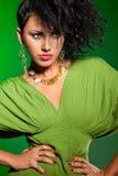Elegant fashionable woman Royalty Free Stock Photography