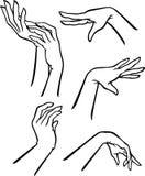 Elegant Female Hand Gestures. Variation of elegant hand set isolated on white background Royalty Free Stock Photos