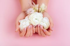 Elegant female hands with Pink Manicured Nails. royalty free stock photo