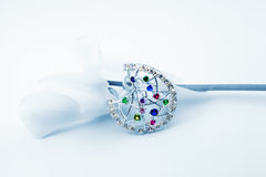 Elegant female jewelry and flower stock images