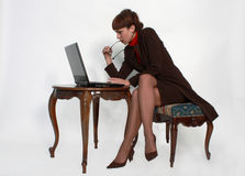 Elegant female by the laptop. Portrait of the elegant business woman sitting by the laptop computer Royalty Free Stock Image