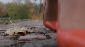 Woman in high heels walking on street in autumn stock video