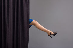 Elegant female legs Royalty Free Stock Image