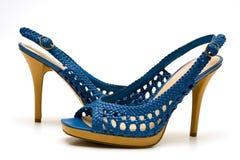 Elegant female shoes Stock Photos