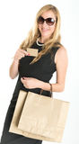 Elegant female shopper Royalty Free Stock Image