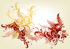 Elegant filigree background with flowers Stock Photos