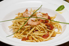 An elegant first course dish with pasta Royalty Free Stock Photos