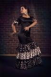 Elegant flamenco dancer Royalty Free Stock Photos