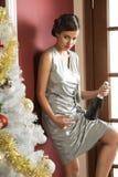 Elegant flicka som är klar för xmas-rostat bröd Fotografering för Bildbyråer