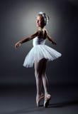 Elegant flickadansroll av den vita svanen Royaltyfri Foto